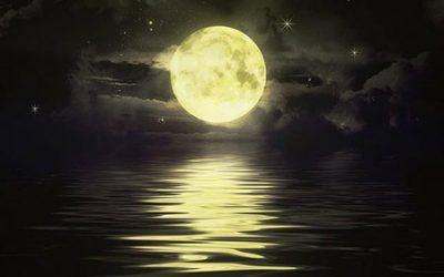 Σονάτα του σεληνόφωτος